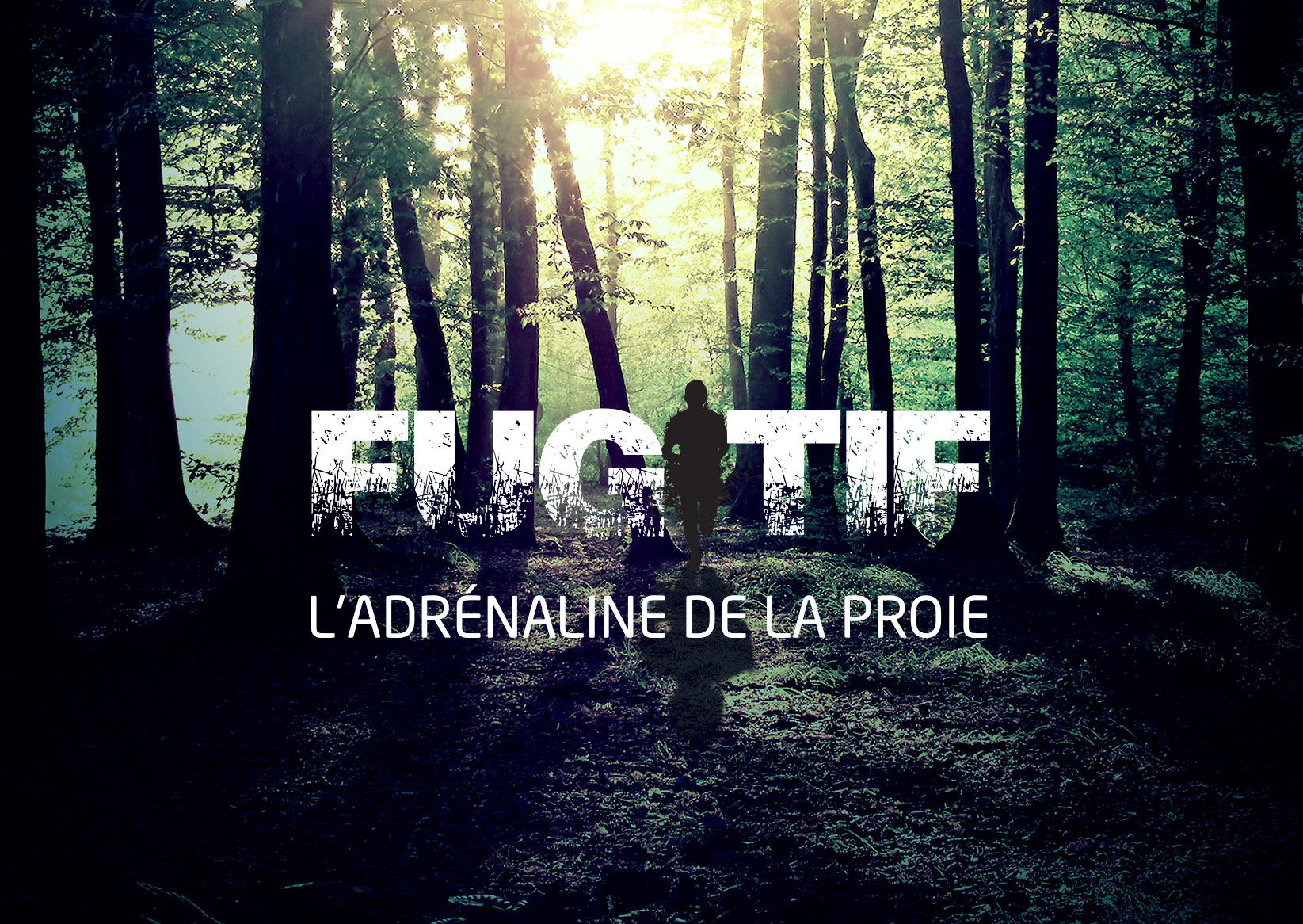 Image promotionnel Fugitif